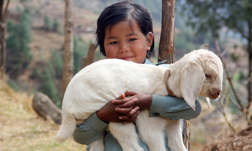 nepal 08 - Népal