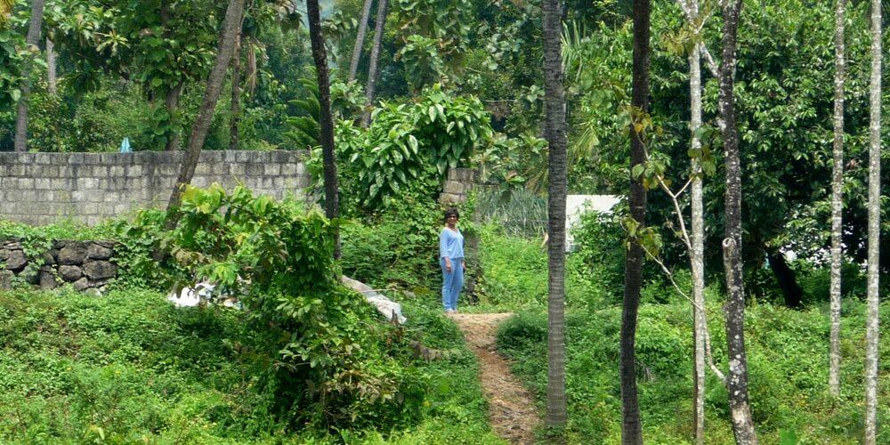 sejour kerala 1000x500 - Blog - Articles et Saveurs des Indes